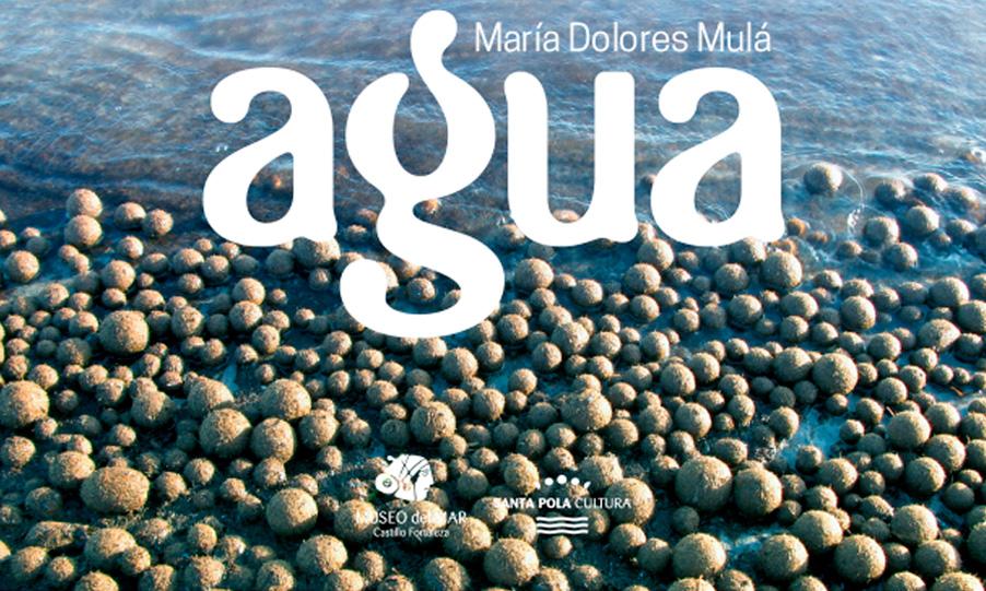 DONACIÓN DE LA COLECCIÓN FOTOGRÁFICA 'AGUA' DE MARIA DOLORES MULÁ AL MUSEO DEL MAR