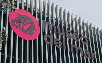 EL MUSEO DEL MAR RECIBE UNA SUBVENCIÓN PARA EL PROYECTO TÉCNICO DE LOS NUEVOS ALMACENES VISITABLES